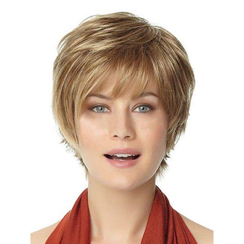 Shops Women Fashion Curling Short Hair High Quality Synthetic Wig