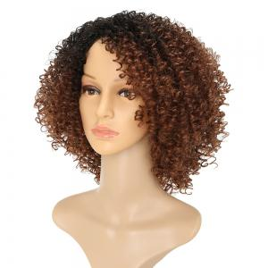 Afro Kinky Curly Hair Ombre Fluffy Short Synthetic Wigs for Girls -