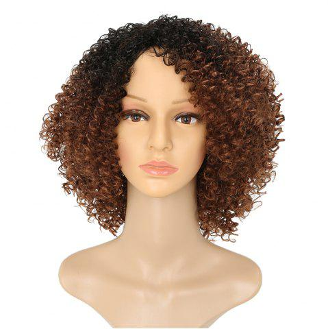 Shop Afro Kinky Curly Hair Ombre Fluffy Short Synthetic Wigs for Girls