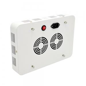 600W Full Spectrum LED Grow Light For Greenhouse Indoor Plant -