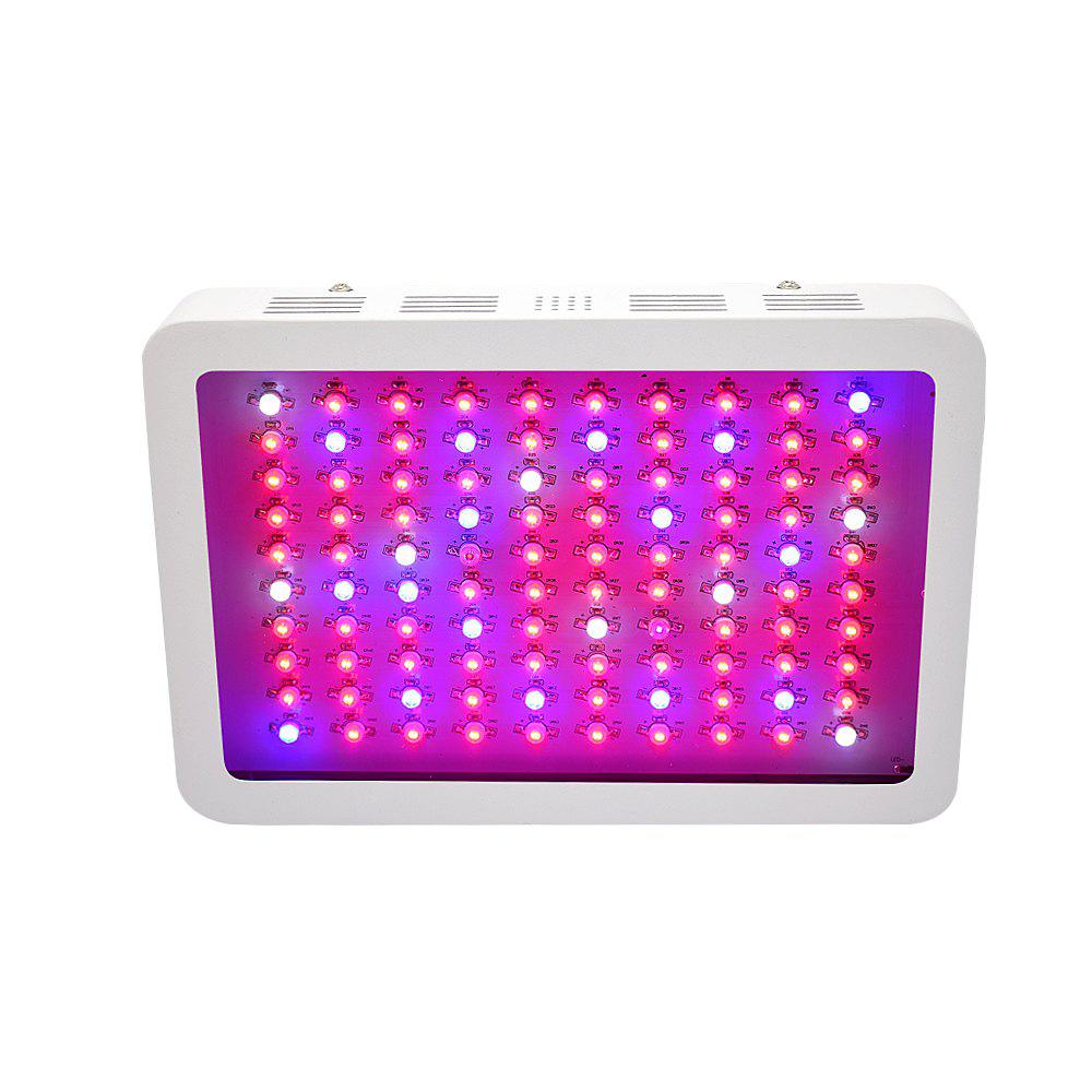 Cheap 600W Full Spectrum LED Grow Light For Greenhouse Indoor Plant