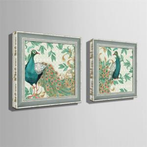 Special Design Frame Paintings Peacock Print 2PCS -