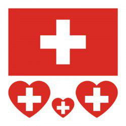 Soccer Swiss Flag Tattoo Body Sticker -