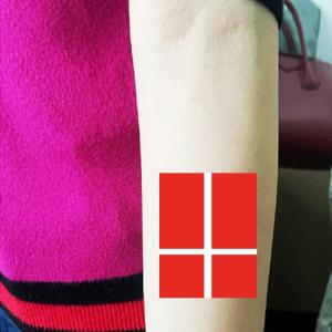 Football Danish Flag Tattoo Body Sticker -