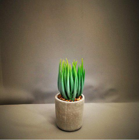 Best Artificial Succulents Green Potted Plant