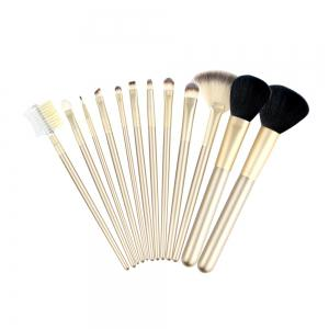 12pcs composent les brosses avec le sac d'or de luxe (collection) -