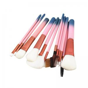 12pcs Cosmetic Brushes Women Lip Face Eye Makeup Brush Sets with Container -