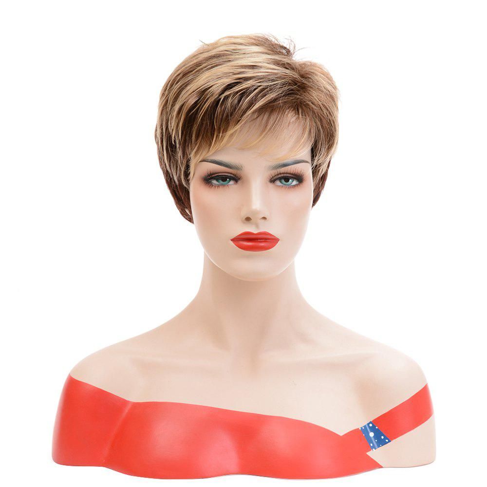 Hot Fashion Blonde Brown Mixed Short Straight Synthetic Hair Wigs for European Women