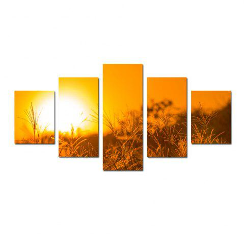 Sale W327 Sunset Grass Unframed Wall Canvas Prints for Home Decorations 5PCS