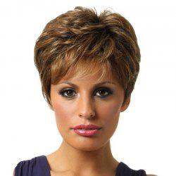 Fluffy Gradient Ramp Short Wig -