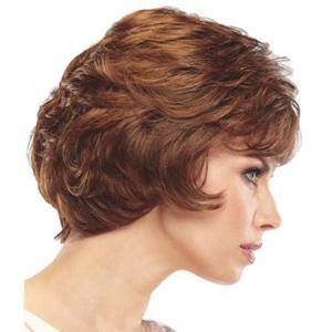 Middle and Old Age Fluffy Short Curly Hair -