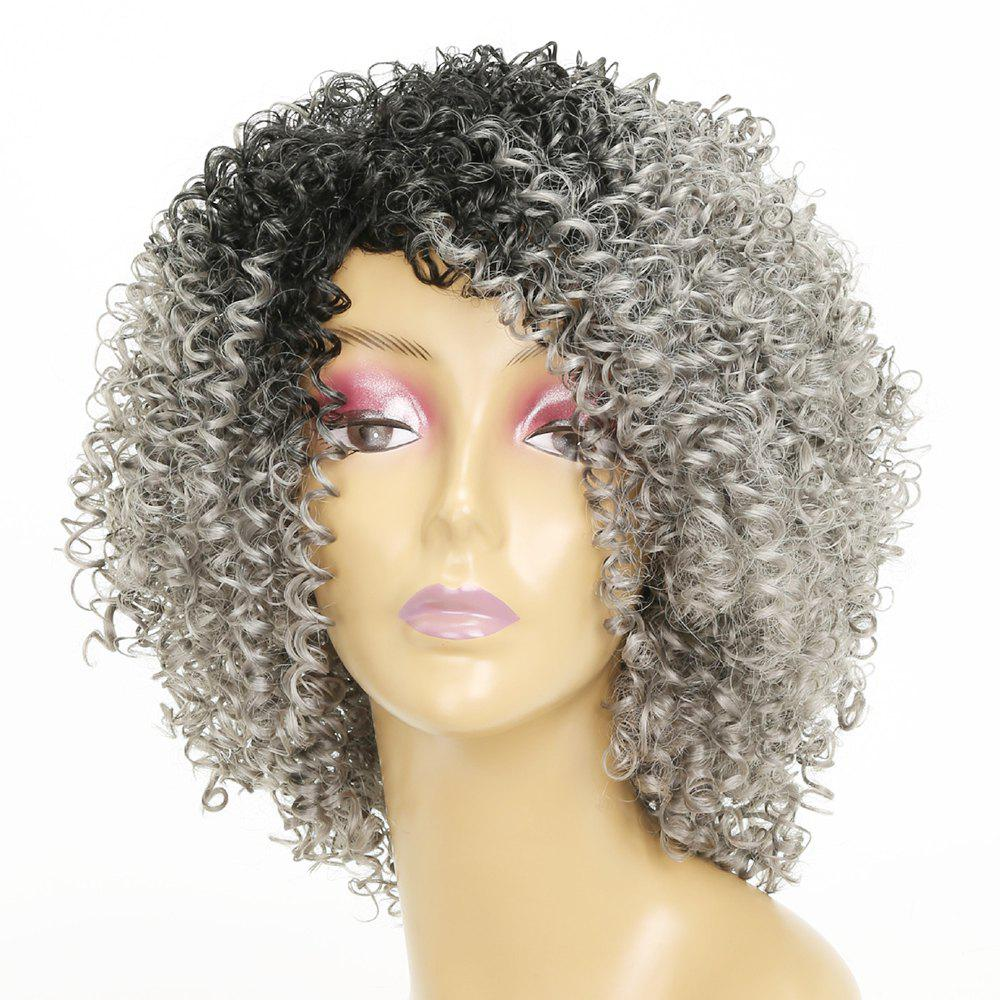 Shops Afro Curly Hair Ombre Fluffy Fashion Short Synthetic Wigs for White Girls
