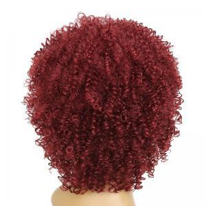 Afro Curly Hair Fluffy Fashion Short Synthetic Party Wigs for White Girls -