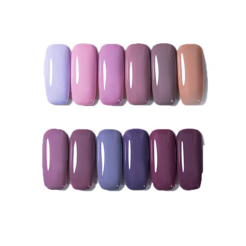Trendy 12 Color Nail Polish Gel Varnish Lacquer Design Set Manicure Kit
