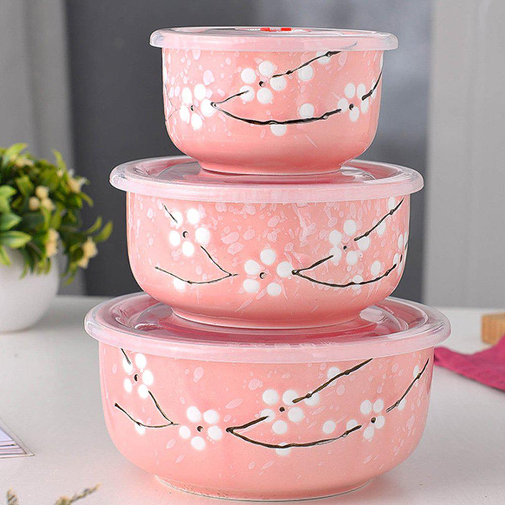 Store 3PCS Insulated Ceramic Lunch Bowls Set
