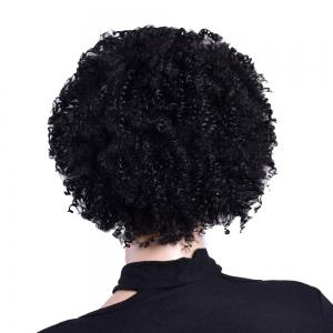 African Afro Curly Black Synthetc Hair Natural Looking Fashion Fluffy Wig -