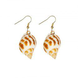 Popular Natural Conch Earrings -
