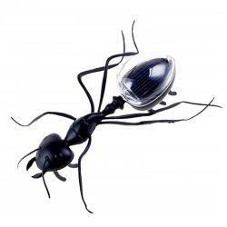 Solar Powered Insect Learn Educational Toy for Children -