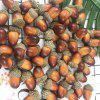 50 Pieces Household Microlandscape Simulation Acorn Christmas Decoration -