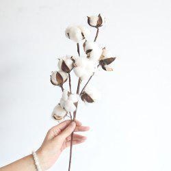 Dried Cotton Stems Farmhouse Style Artificial Flower Filler -