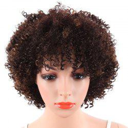 Fluffy Small Curly Short Wig -