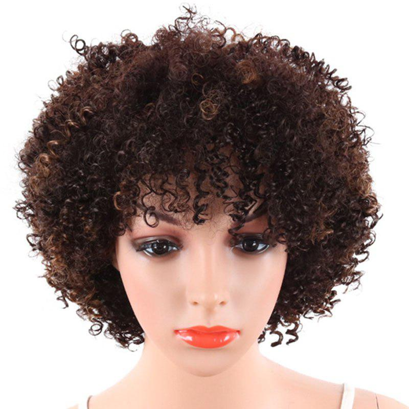Fancy Fluffy Small Curly Short Wig