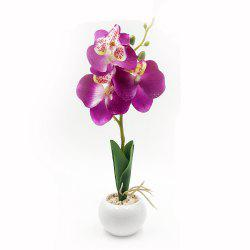 Orchid Flower Ceramics Potted Plant -