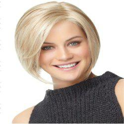 A Bobbed Wig for Women with Short Hair and A Straight Wig for Women -