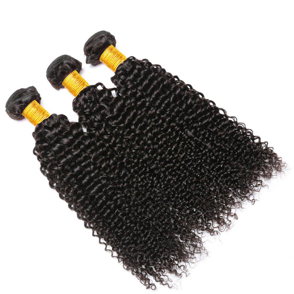 Shop Indian Curly Hair 3 Bundles Unprocessed Human Hair Extensions Deep Curly Weave