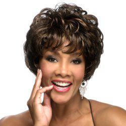 Fashionable New Chemical Fiber Bouffant Short Curly Wig -