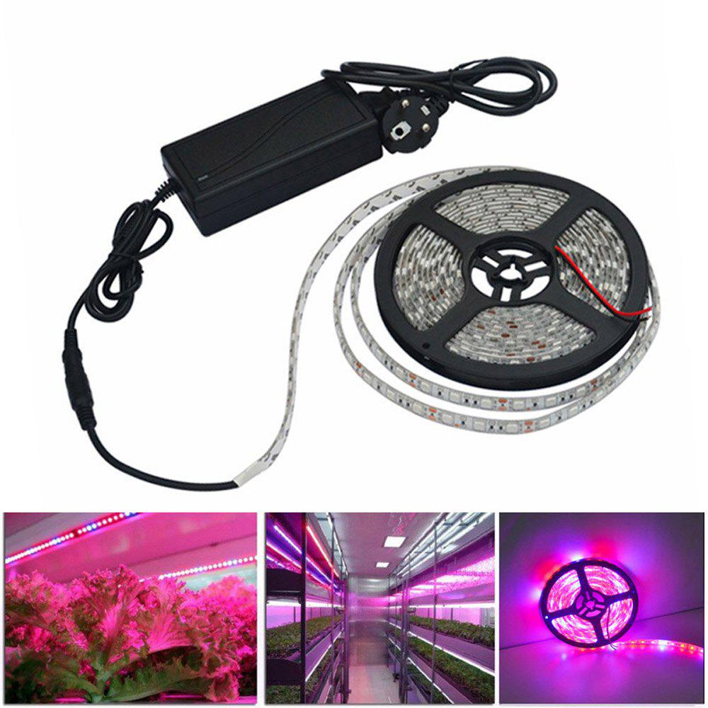LED Grow Lights Growing LED light Strip 5050 IP65 Plant Growth Light for Greenhouse Hydroponic plant 5m/lot AC100-240VHOME<br><br>Color: RED AND BLUE LIGHT; Type: Plant Light Strip; Length ( m ): 5; Light color: Red,Blue; Wattage (W): 25; Voltage: 100 - 240V; Power Supply: Power Adapter; Features: Cuttable,Self-Adhesive; Width( mm ): 10; Waterproof Rate: IP65; Light Source: 5050 SMD; Beam Angle: 180; Initial Lumens ( lm ): 1800; LED Quantity: 300; Color Temperature or Wavelength: 700-635nm (Red) 490-450nm(Blue);